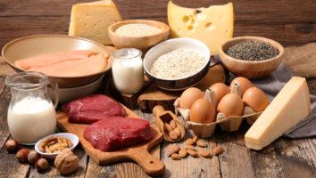【タンパク質(プロテイン)の種類と原材料について】